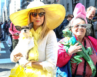 Easter Parade 2015 011